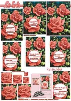 630004 Le Suh Pyramids bloemen