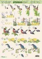 3DSLMIR039 - Vogels