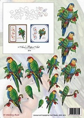 3DSS10014 Papagaai Borduur