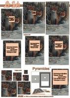 630089 Le Suh Pyramids dieren
