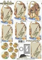 630109 Le Suh Pyramids hond