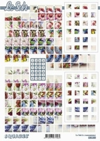 630220 Le Suh Pyramids bloemen