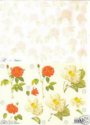 Romantic Roses combi 02 Studio light