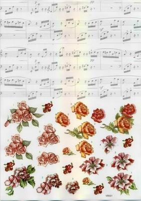 VB0001 Rozen Muziek Combi