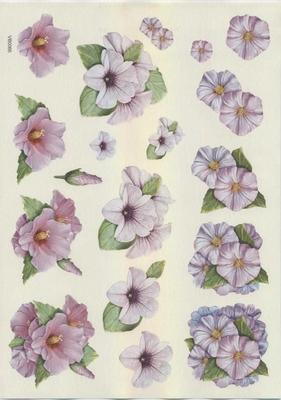 VB0066 Bloemen Hibiscus