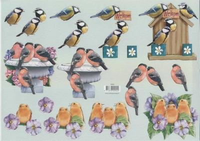 VB0902 Vogelhuisje/Vogels