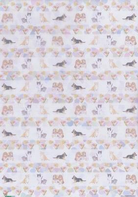 VELLUMANIMALS04 Animals Studio Light
