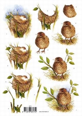 VB8575 Vogel Nestje