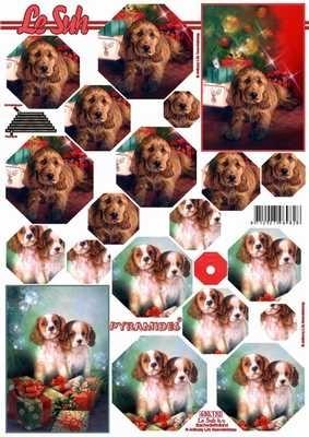 630132 Le Suh Pyramids honden