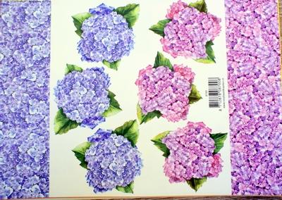 VB8700 A4 knipvel bloemen