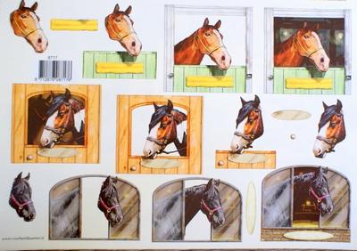 VB8717 A4 knipvel Paarden