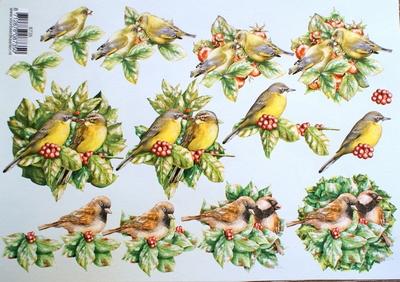 VB8735 A4 knipvel vogels