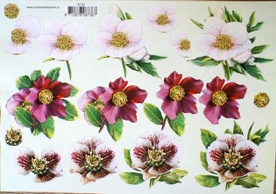 VB8736 A4 knipvel bloemen