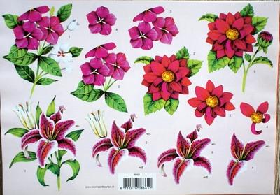 VB8661 A4 knipvel Bloemen