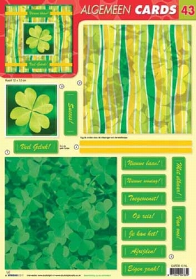 Cards43 Cards Studio Light 200 Gr.Karton