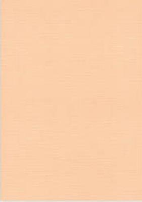 Vierkant karton 13,5 X 27 cm  Nr 09 Zalm per 5 vel
