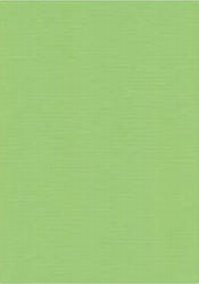 Vierkant karton 13,5 X 27 cm  Nr 21 Meigroen per 5 vel