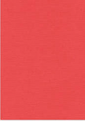 Vierkant karton 13,5 X 27 cm  Nr 42 Flaming per 5 vel