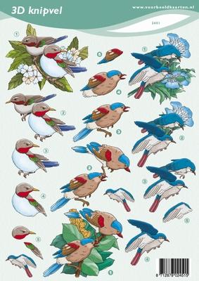 VB2451 Vogels
