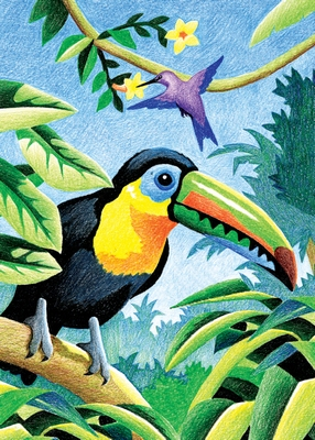 CPNMIN-103 - Kleuren op nummer - MINI CPN - TROPICAL BIRDS