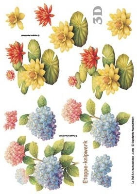 416933 Hortensia en waterlelie