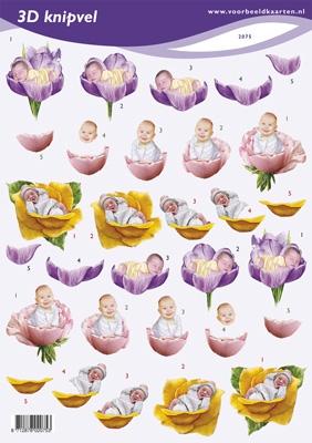 VB2075 Baby in Bloem