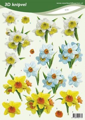 VB2177 Voorjaarsbloemen