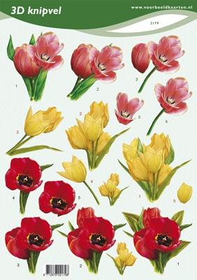 VB2179 Voorjaarsbloemen