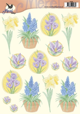 VB2436 Bloemen