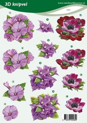 VB2469 Bloemen
