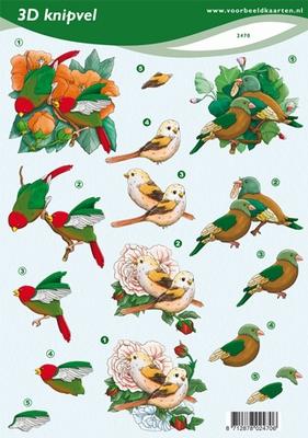 VB2470 Vogels