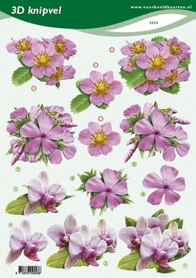 VB2553 Bloemen