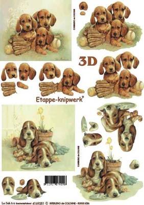 4169251  Hondenpuppies