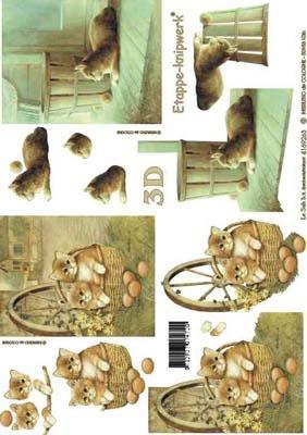 4169253 Jonge Kitten