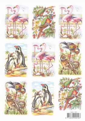 VB9010 Vogels