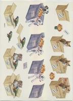 VB0072 Verhuizen Hond/Kat