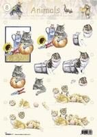 STAPANIMALS08 Animals Studio Light