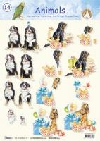 STAPANIMALS14 Animals Studio Light