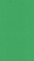 Opleg kaart 10 X 14,5 cm Nr 22 Groen per 4