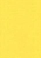 Vierkant karton 13,5 X 27 cm  Nr 06 Kanariegeel per 5 vel