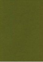 Vierkant karton 13,5 X 27 cm  Nr 41 Mosgroen per 5 vel