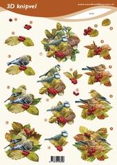 VB2355 Vogels