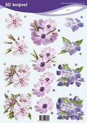VB2357 Bloemen