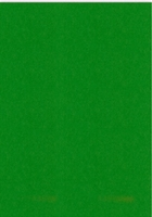 A5 Karton  148 X 210 MM  Nr 60 Fern Green per 5 vel