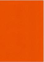 Vierkant karton 13,5 X 27 cm  Nr 59 Autumn Orange per 5 vel