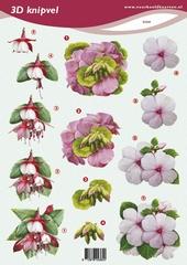 VB2360 Bloemen
