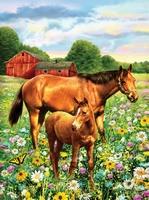 PJS81 PBN Junior Small HORSE IN FIELD