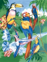 PJS15 PBN Junior Small TROPICAL BIRDS