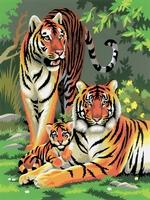 PJS27 PBN Junior Small TIGERS