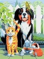 PJS29 PBN Junior Small FAMILY PETS